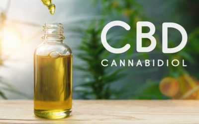 Does CBD Oil Really Work?